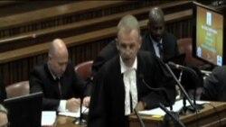 """南非""""刀鋒跑者""""繼續接受控方質詢"""