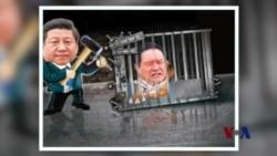 火墙内外:外媒揭秘周永康家族财富