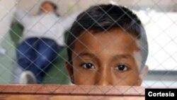 Los niños quedan en custodia de familiares o sus propios padres que ya se encuentran en EE.UU.
