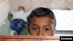 Según el experto en inmigración el Congreso debe cambiar la ley de inmigración porque las autoridades se ven obligadas a seguir un proceso de deportación de menores que puede prolongarse por meses.