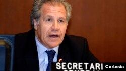 El secretario general de la OEA, Luis Almagro, pidió activar la carta democrática interamericana sobre Venezuela.
