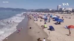 熱浪熾烤加州 居民海灘避暑