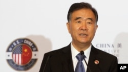 新一届中国全国政协主席汪洋 (资料照片)