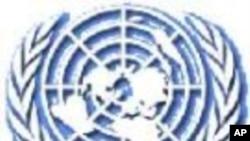 U.N. Committee Rebukes Iran