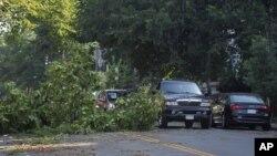 A fallen tree blocks one lane of traffic on 13th Street NW in the Logan Circle neighborhood of Washington, Saturday, June 30, 2012.