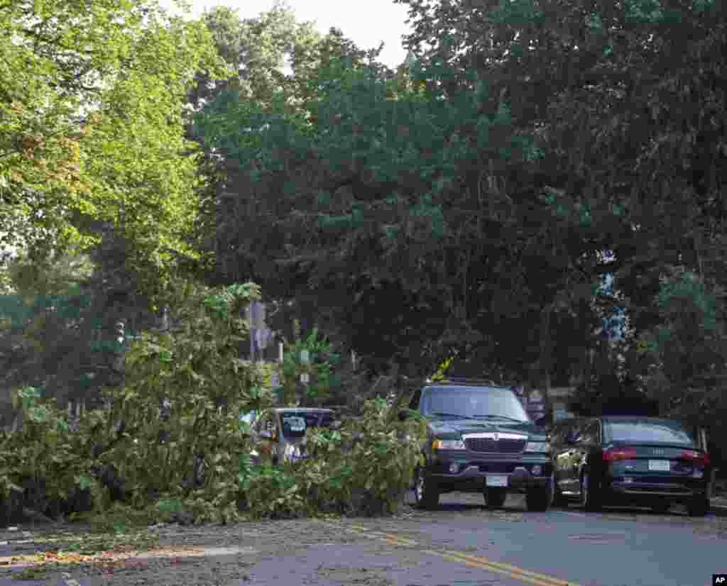 A fallen tree blocks one lane of traffic on 13th Street NW in the Logan Circle neighborhood of Washington, Saturday, June 30, 2012.
