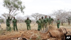 FILE - Kenyan Wildlife Rangers standing near the carcass of an elephant in Tsavo East, Kenya, in this June 19, 2014, photo.