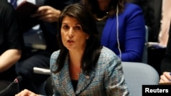 United States Ambassador to the United Nations Nikki Haley addresses the U.N. Security Council on Syria. (File)