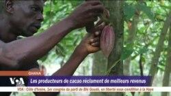 Les producteurs de cacao réclament de meilleurs revenus