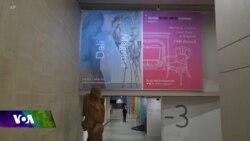 Pêşangeha Berhemên Dali û Magritte li Brukselê