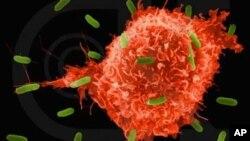 Αιματολογική εξέταση για τον εντοπισμό καρκινικού κυττάρου