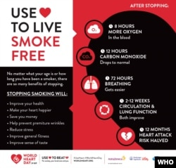 The World Heart Day Infographic © World Heart Federation