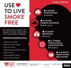 World Heart Day Infographic © World Heart Federation