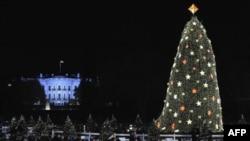 Cây thông Giáng Sinh Quốc Gia được trồng ở một thửa đất trống gần Tòa Bạch Ốc, năm nào cũng được trang hoàng rực rỡ để chào đón Giáng Sinh