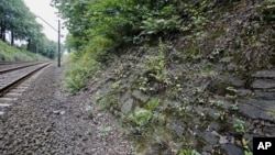 The potential site where a Nazi gold train is believed to have been hidden, is seen near the city of Walbrzych, Poland, Aug. 28, 2015.