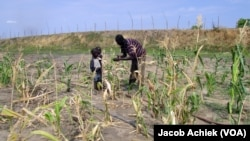 South Sudanese farmer Paul Alim Amuol talks to two children in the maize field of his 4.5-hectare farm in Bor, Jonglei state. The farm produces more food crops than Amuol is able to sell locally.