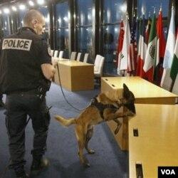 Polisi Perancis dan anjing pelacaknya memeriksa ruang di mana para pemimpin G20 akan berkumpul untuk KTT di Cannes ini.