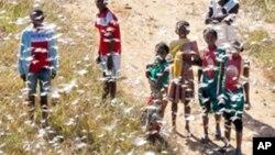 Farin dango a kasar Madagascar