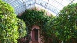 طرح و تعبیه یک باغچه ایرانی درشهر ژنو به عنوان مظهری از صلح و هارمونی جهانی