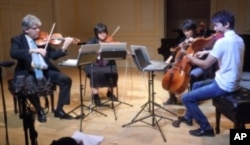 The Borromeo String Quartet rehearses before performing a Library of Congress concert honoring Antonio Stradivari.
