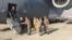 Jim Mattis ve NATO Genel Sekreteri Jens Stoltenberg Kabil havaalanında