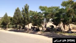 معتادین در یکی از پارک های هرات