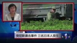 VOA连线:突尼斯袭击事件,三名日本人丧生