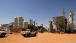激进分子在阿尔及利亚扣留41名外国人质