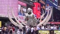 ԲԱՐԻ ԼՈՒՅՍ. Ինեսա Մխիթարյան՝ այցելություն Նյու Յորք