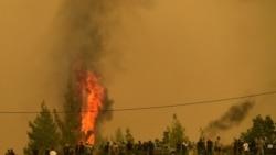 希臘消防員繼續奮力撲滅山火