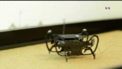 TEC: Robot cucaracha