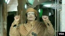 Televisi pemerintah Libya menyiarkan pidato Moammar Gaddafi di Tripoli, Libya (22/2). Gaddafi bersumpah untuk terus melawan para demonstran yang menuntutnya mundur.
