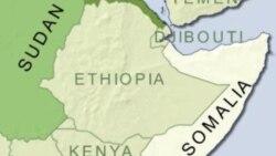 Oromoo wal dhaba daarii Somaaleetiin baqattee horii miliyoona hedduu walti guuruutti jiran