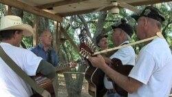 نواختن موسیقی «بلوگراس» در فلوریدا زیر درختان بلوط و بید مجنون