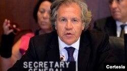 """El secretario general de la OEA dice que el preso político necesita """"urgente atención médica""""."""