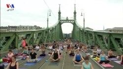 پل آزادی در بوداپست مجارستان، در خدمت مردم