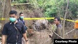 Petugas dari Polres Aceh Timur dan BKSDA Aceh saat memasang garis polisi di tempat kejadian matinya gajah Sumatera, Kamis (21/11). (Courtesy: BKSDA Aceh).