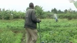Kenya Farmers Getting Green
