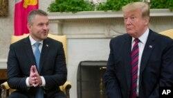 美国总统特朗普(右一)在白宫会见斯洛伐克总理佩莱格里尼(左一)。(2019年5月3日)