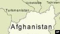 افغانستان ممنوعہ کیمیکلز کی تجارت کی روک تھام کے لیے اقوام متحدہ سے تعاون کرے گا