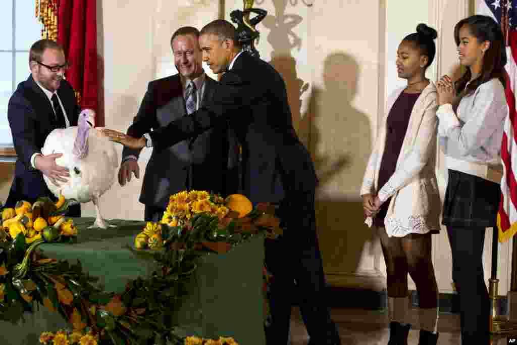 2014年11月26日,美国总统奥巴马赦免火鸡,他的两个女儿在场观看。