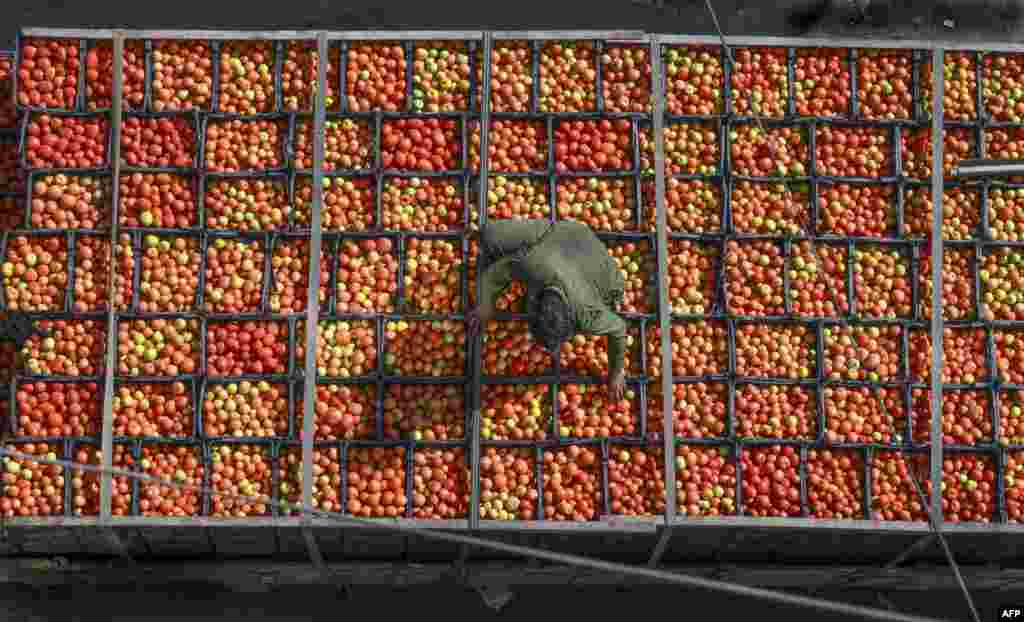 A laborer arranges tomatoes in crates at a market in Lahore, Pakistan.