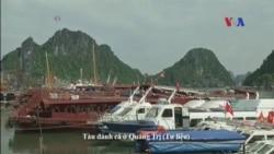 Tàu đánh cá của ngư dân Quảng Ngãi 'bị đâm chìm' trong ngày đầu năm mới