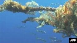 Okyanuslardaki Plastik Kirliliği Korkutuyor
