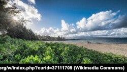 ساحل «کاپالوئا» در هاوایی