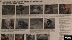 Poster tentang tata cara penyembelihan halal terpampang di salah satu dinding peternakan Wagon Wheel, Maryland.