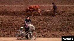 지난 2012년 4월 북판 평양 외곽의 농촌 풍경. (자료사진)