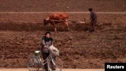 지난해 4월 북판 평양 외곽의 농촌 풍경. (자료사진)