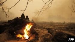 520 đám cháy rừng vẫn tiếp diễn trên khắp nước Nga