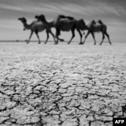 Rezerve vode se smanjuju